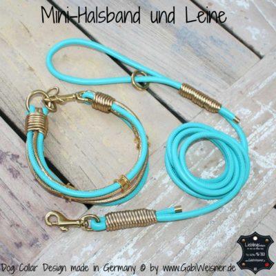 Mini-Halsband und Leine