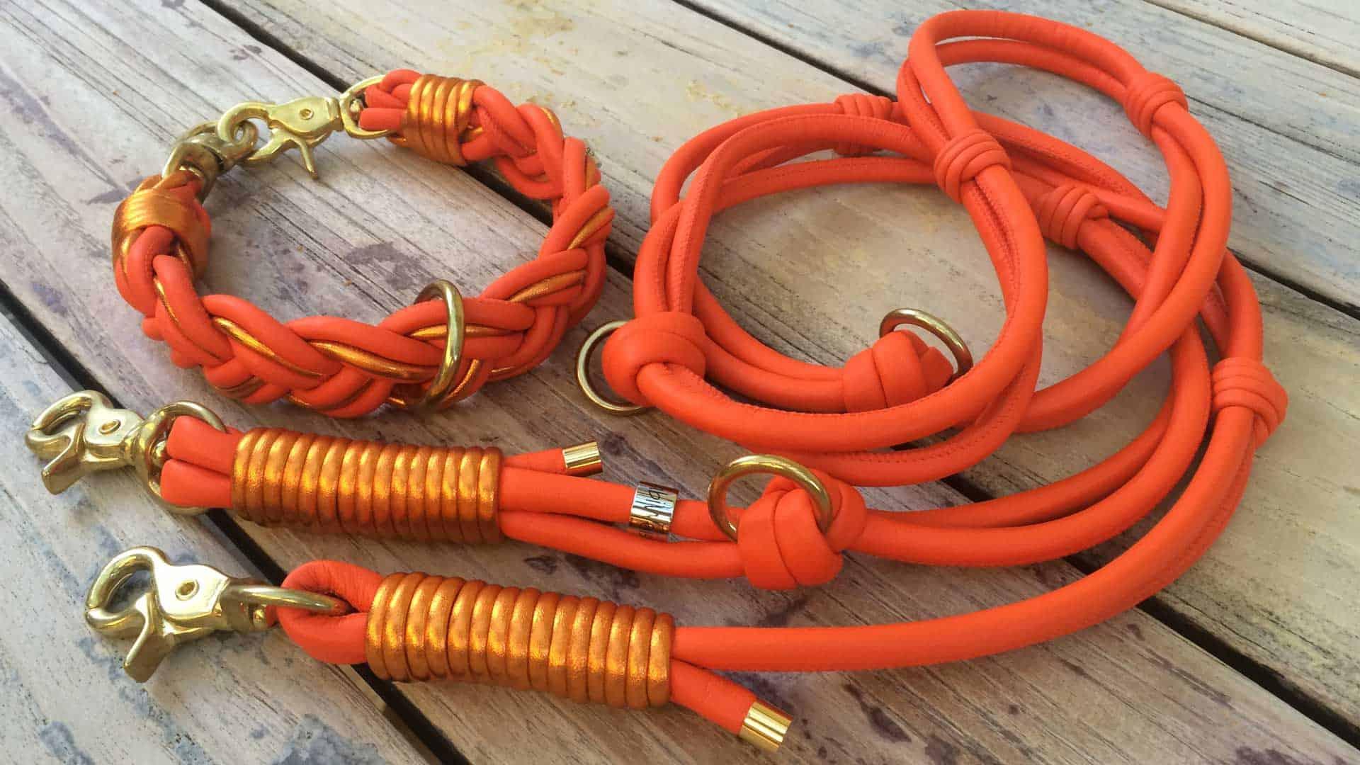Halsband und Leine für Hunde