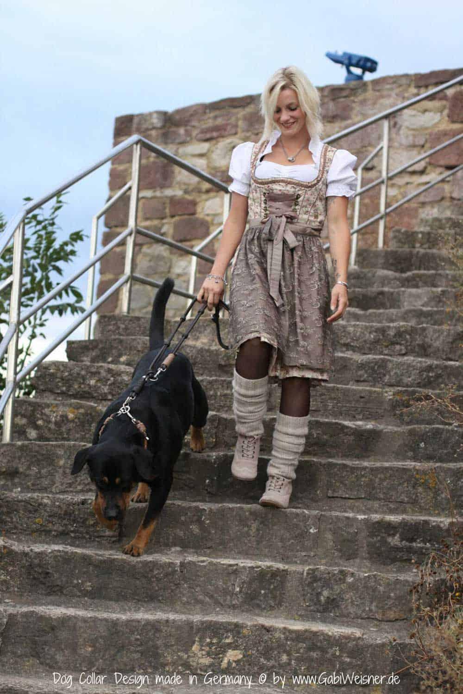 Luxus für Hunde aus Leder im Set