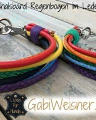 hundehalsband-regenbogen-beide-1