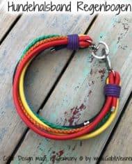 hundehalsband-regenbogen-breit-2