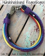 hundehalsband-regenbogen-breit-22