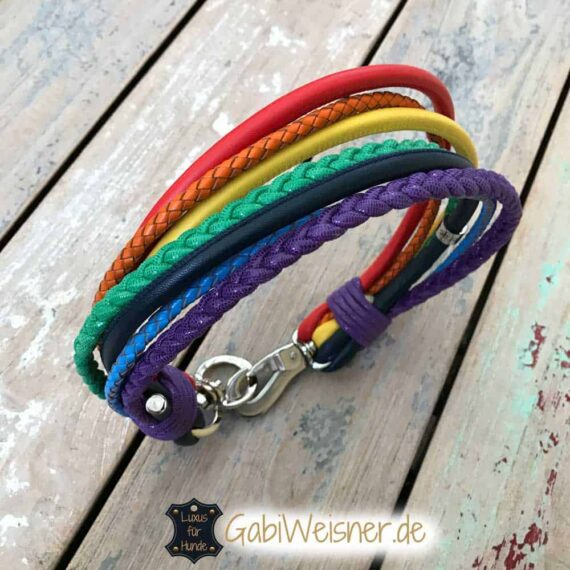 Hundehalsband Regenbogen Leder Mix 5,5 cm breit