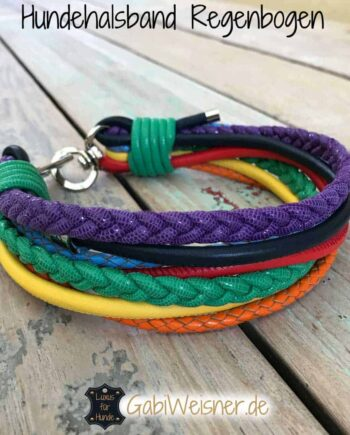 Hundehalsband Regenbogen Leder Mix 5 cm breit