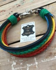 Hundehalsband Regenbogen simba
