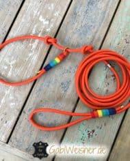 retrieverleine-regenbogen-leder-8-mm-1