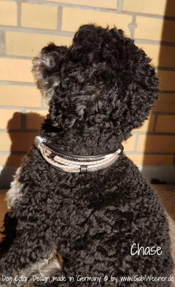 Zugstopp Halsband für kleine Hunde