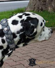 hundehalsband-leder-geflochten-dark-3