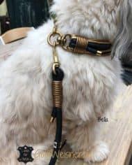 luxus-hundehalsband-exklusiv-mit-ohr-tunnel-leder-blau-gold-bella-4