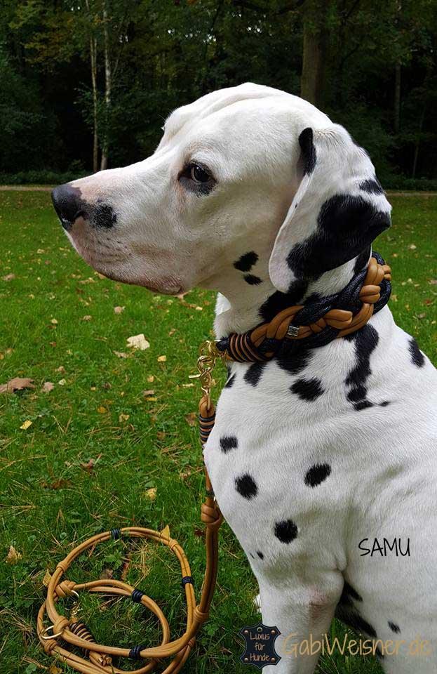 Hundehalsband Leder extra breit geflochten in Cognac und Blau