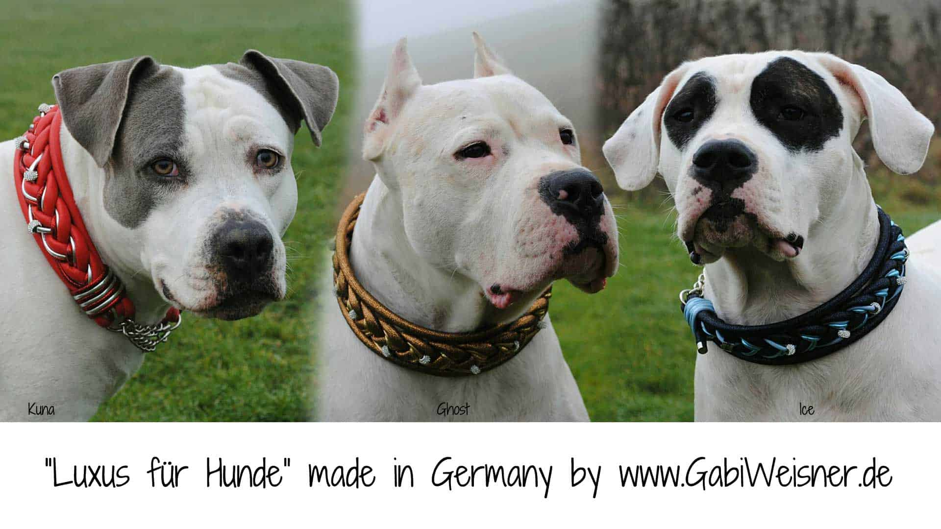 Luxus für Hunde made in Germany by GabiWeisner.de