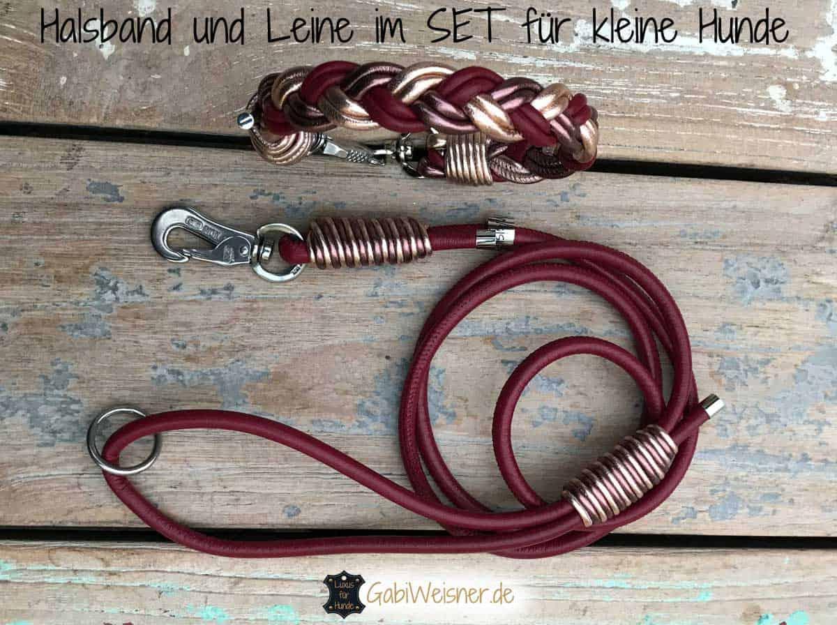 Halsband und Leine im SET für kleine Hunde