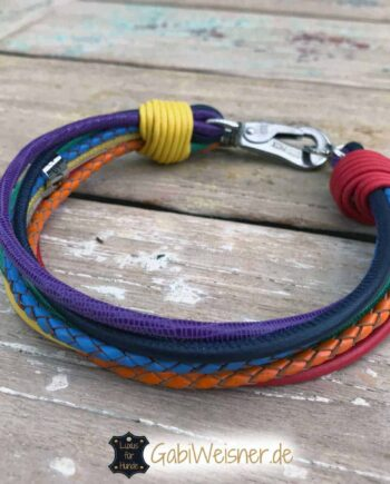 Hundehalsband Regenbogen 3 cm breit