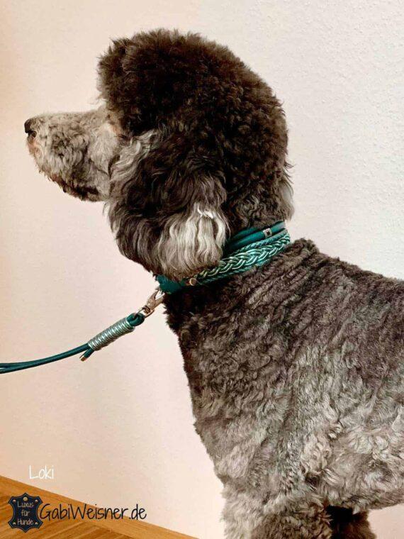 Hundehalsband 5 cm breit Leder Mix in Petrol