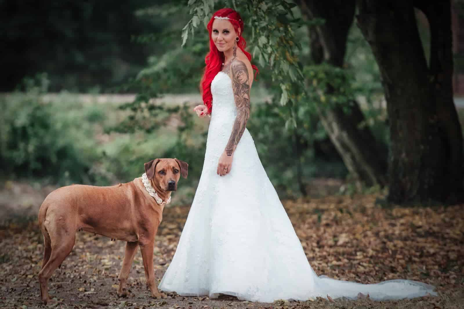 Hundehalsband Rhodesian Ridgeback Hochzeit Kyra