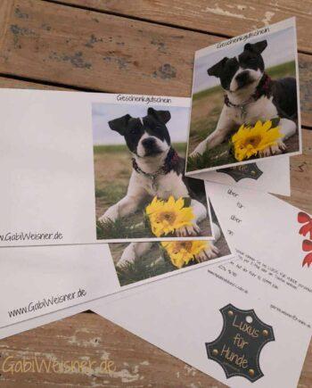 Geschenkgutschein für Hundemenschen