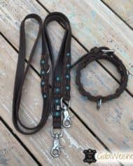 Halsband-und-Leine-Welpen-SET-für-große-Hunderassen-1