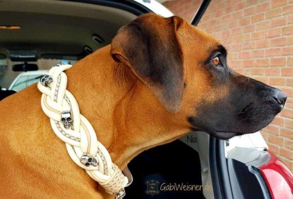 Hundehalsband Leder 5 cm breit geflochten. Das Lederbandin den Farben Elfenbein, Beige, und Perlmutt