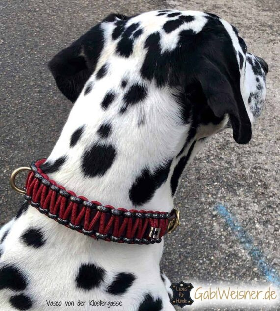 Hundehalsband 3 cm breit geknotet