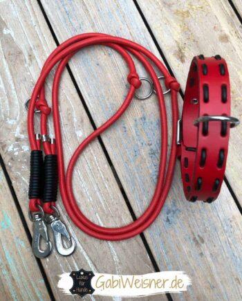 Hundehalsband und Führleine im SET