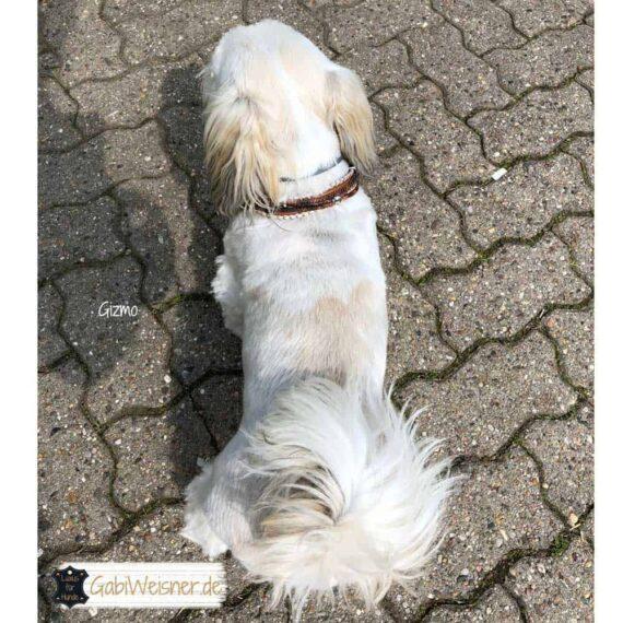 Mini Hundehalsband Leder Mix in Braun PerlmuttMini Hundehalsband Leder Mix in Braun Perlmutt