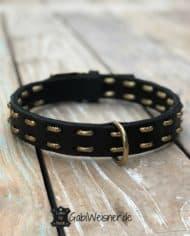 Hundehalsband-Leder-für-große-Hunde-3cm-breit-gold-1