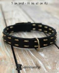 Hundehalsband-Leder-für-große-Hunde-3cm-breit-gold-3-cm-breit-•-55-bis-60-cm-HU