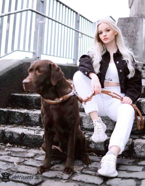 Luxus Hundeleine Leder Mix in Sattelbraun