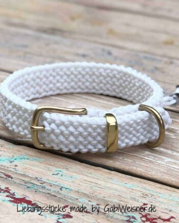 Hundehalsband in Weiss