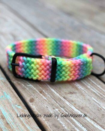 Hundehalsband Regenbogen 3 cm breit stufenlos verstellbar