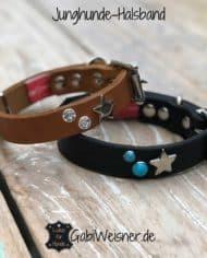 Junghunde-Halsband
