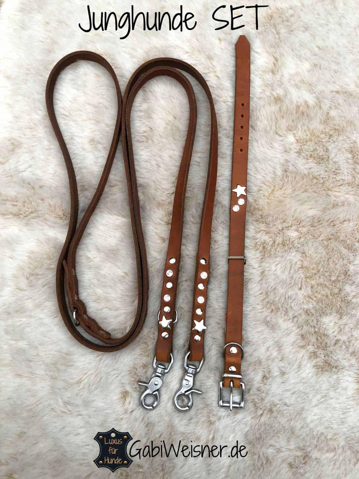 Junghunde SET Halsband und Leine aus Leder kombiniert mit Edelstahl