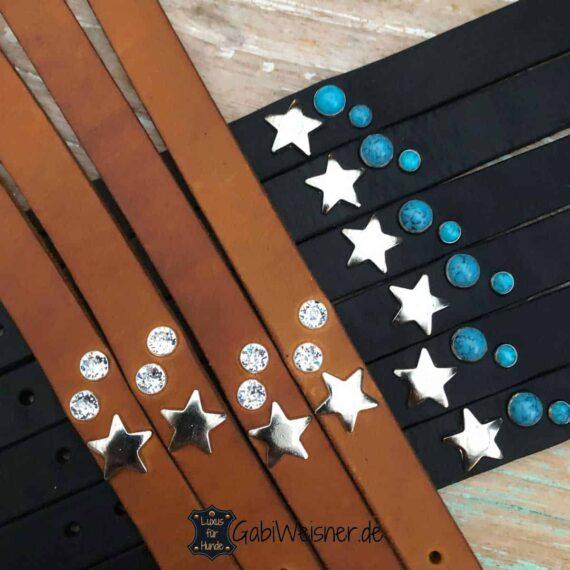 Junghund LederLeine kombiniert mit Edelstahl, dekoriert mit Stern