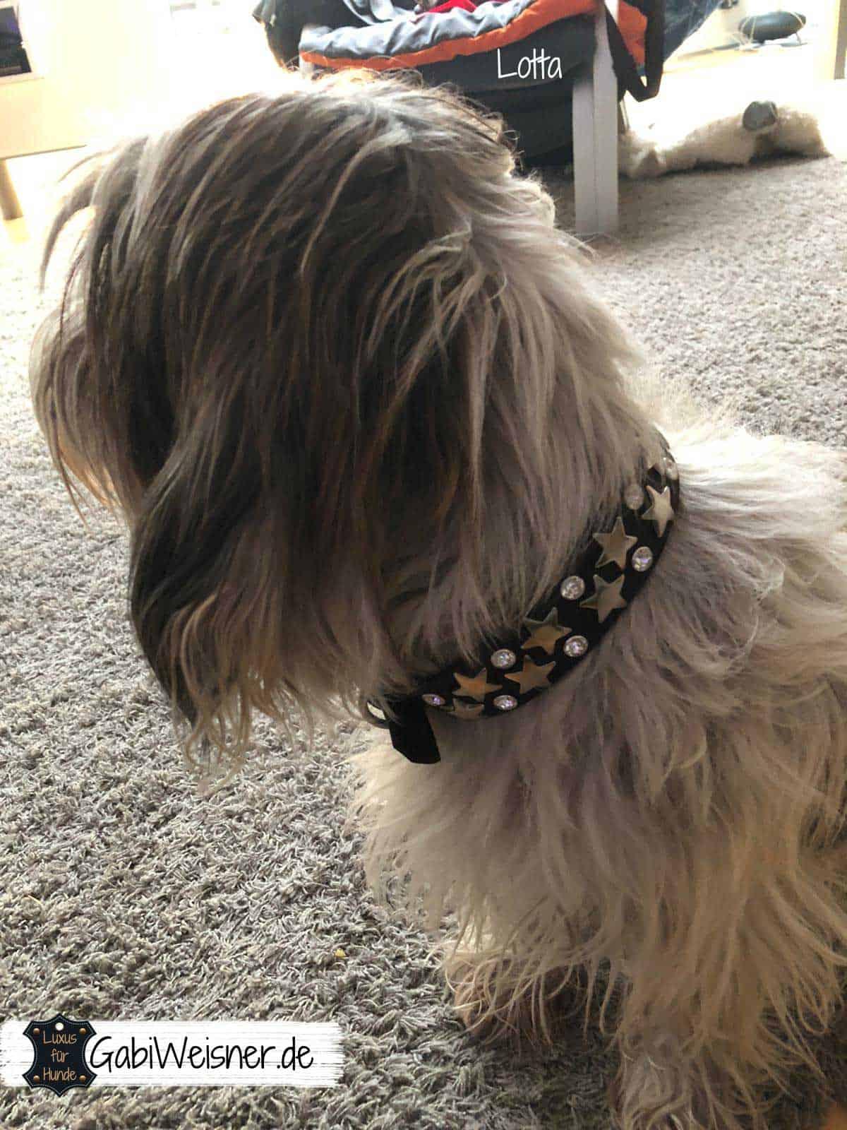 Hundehalsband mit Swarovski