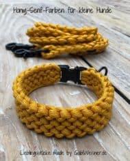 Hundehalsband-und-Leine-in-Honig-Senf-Farben-für-kleine-Hunde