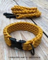 Hundehalsband-und-Leine-in-Honig-Senf-Farben-für-kleine-Hunde-Klickverschluss