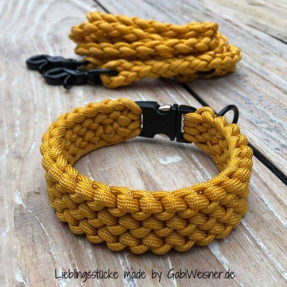Hundehalsband und Leine für kleine Hunde. Honig-Senf-Farben