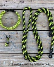 Hundehalsband-SET-in-Schwarz-Gelb-für-mittelgroße-Hunde-1