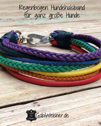 Regenbogen Hundehalsband Leder Mix für ganz große Hunde