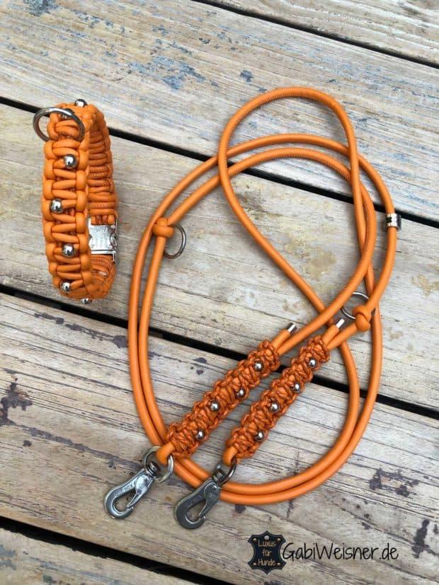 Halsband und Leine für kleine Hunde
