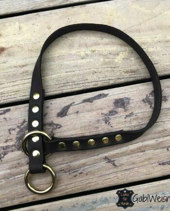 Halsband ohne Zugstopp, Leder 2 cm breit, mit Messingbeschlag