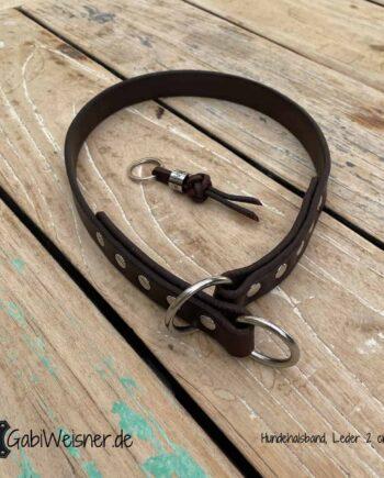 Hundehalsband ohne Zugstopp, Leder 2 cm breit, mit Edelstahl oder Messingbeschlag