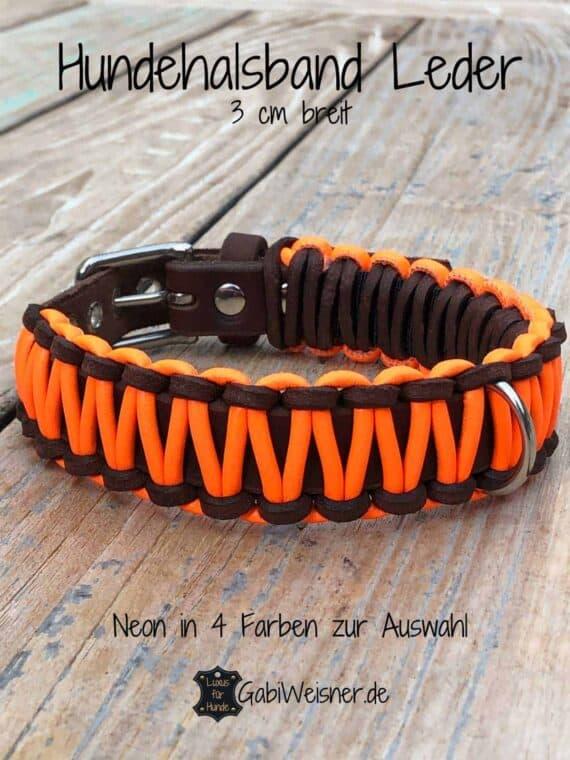 Hundehalsband Neon Orange, Leder 3 cm breit, kleine und mittelgroße Hunde
