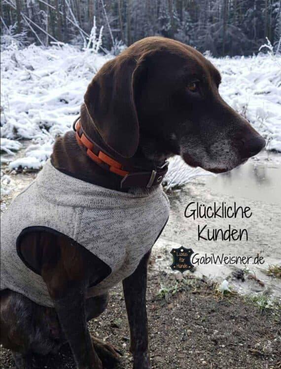 Hundehalsband Leder 3 cm breit, Edelstahl oder Messing, 4 Farben