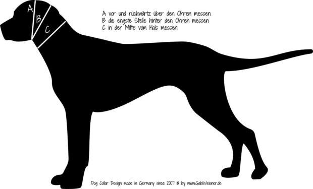 Messanleitung Hundehalsband Leder Gabi Weisner Köln