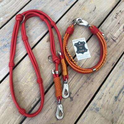 Hundehalsband-Leder-Hundeleine-rot-orange-tuerkis-1