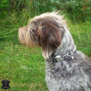 Hundehalsband-Leder-Txoko-3