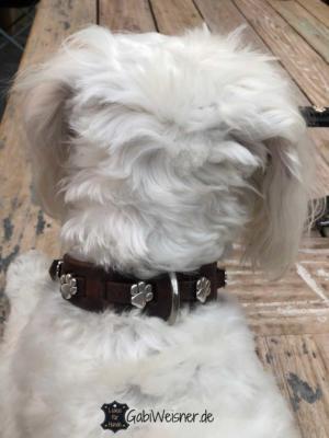 Hundehalsband-mit-Pfoten-auf-Leder-für-kleine-Hunde-braun-schnee