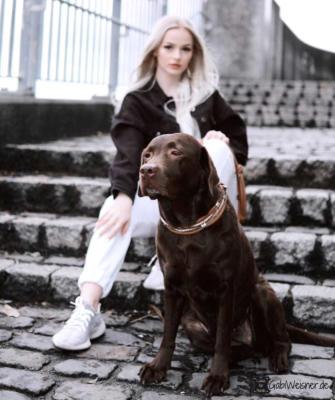 Hundehalsband Leder OhrTunnel Tula Celina 2