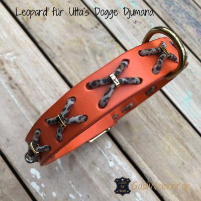 Leopard-für-Utta´s-Dogge-Djumana
